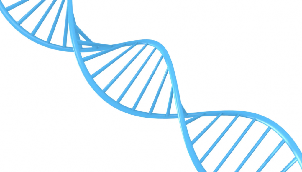 GTL DNA